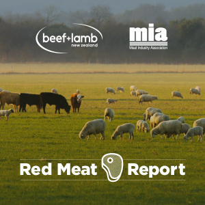Red Meat Report Issue 01